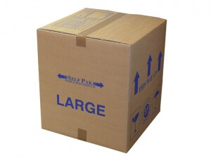 Packing Box 2 Pick and Move